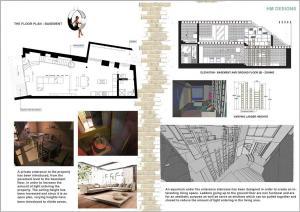 residential-basement halelema malik